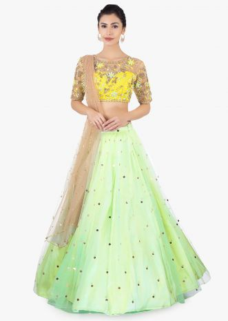 Pista green net lehenga paired with a yellow net blouse and brown net dupatta