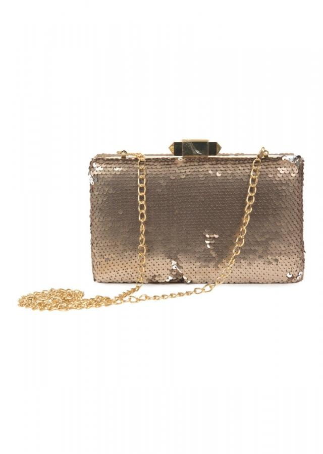 Silver Clutch in rectangular shape featuring in sequin work